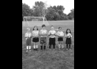 AYSO U-8 lions: (not in order) Patrick Confer, Finn Drouse, Haleigh Havercamp, Luke Hugo, Jacoby Kocot, Kaylee Kolka, Rosalie Rodriguez, Luke Schalk, Jonathan Sika; Coach: Raven Wieland.                                                         --Journal Photo